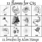12 Flames for CS3